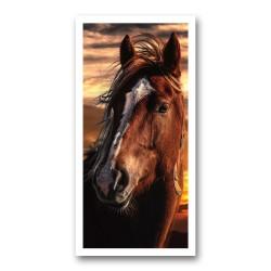 Portret cheval 3